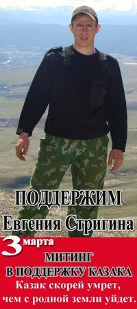 Стригин Евгений Викторович